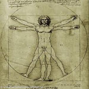 Da Vinci bild